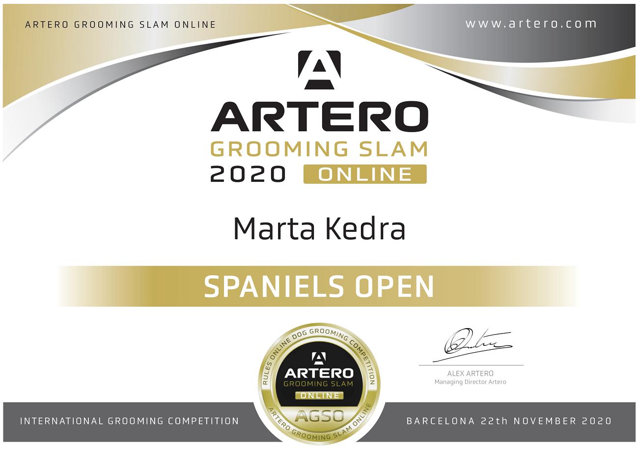 Uczestnictwo w Międzynarodowym Konkursie Artero Grooming Slam 2020. Start w Klasie Open w Kategorii Pudel Standard