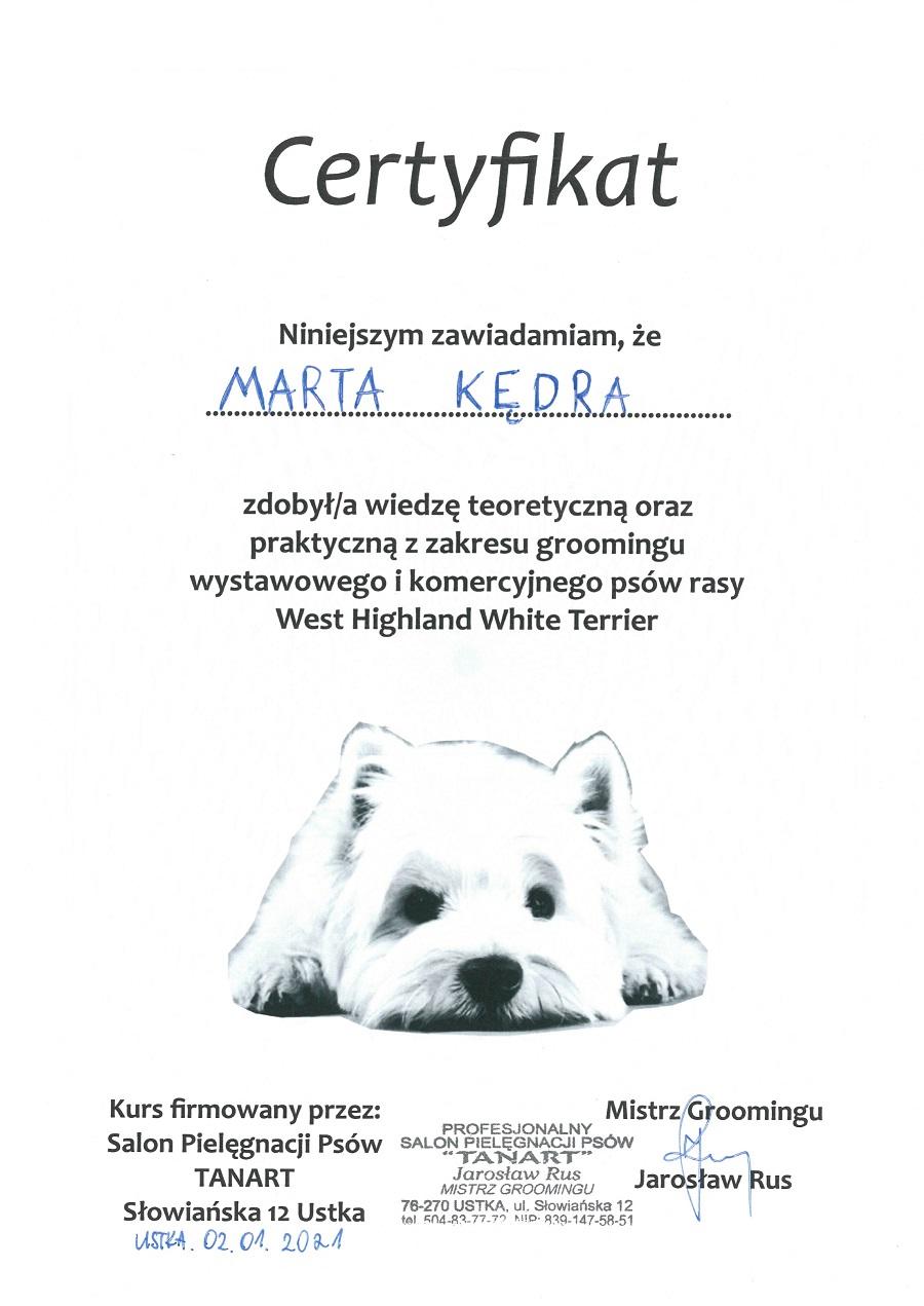 02.01.2021 Szkolenie groomingu West Highland Terrier