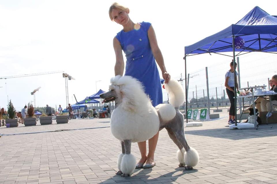 Międzynarodowy konkurs w Kaliningradzie. Lipiec 2019.