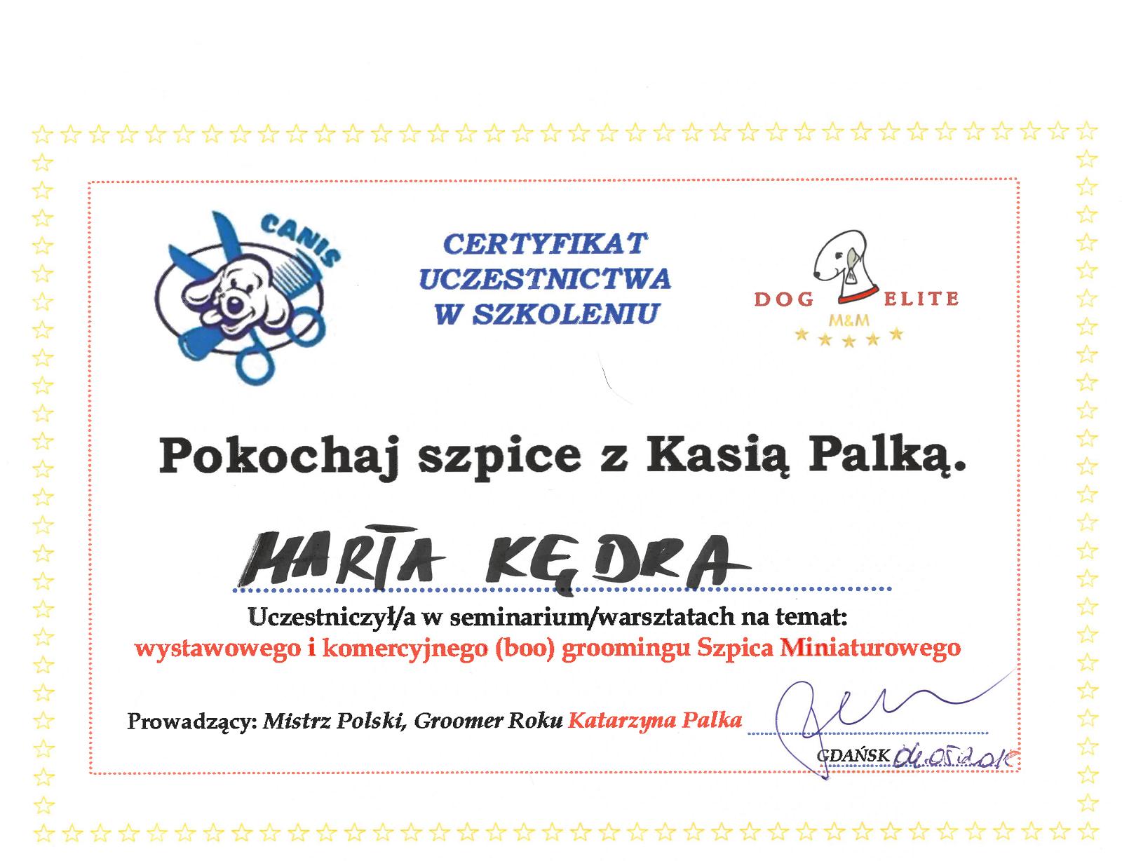 Seminarium i warsztat z przygotowania rasy pomeranian - instruktor Katarzyna Palka. Gdańsk 2018.